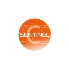 Télécommande de portail SENTINEL